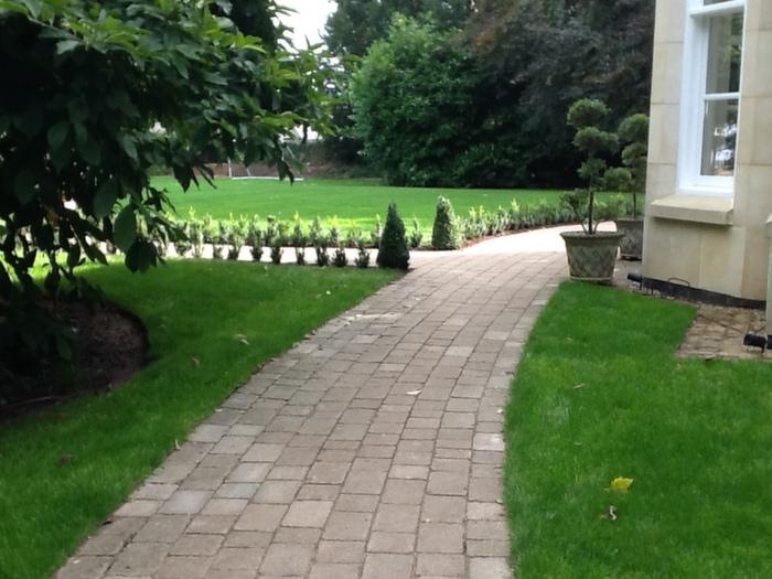 pathway01